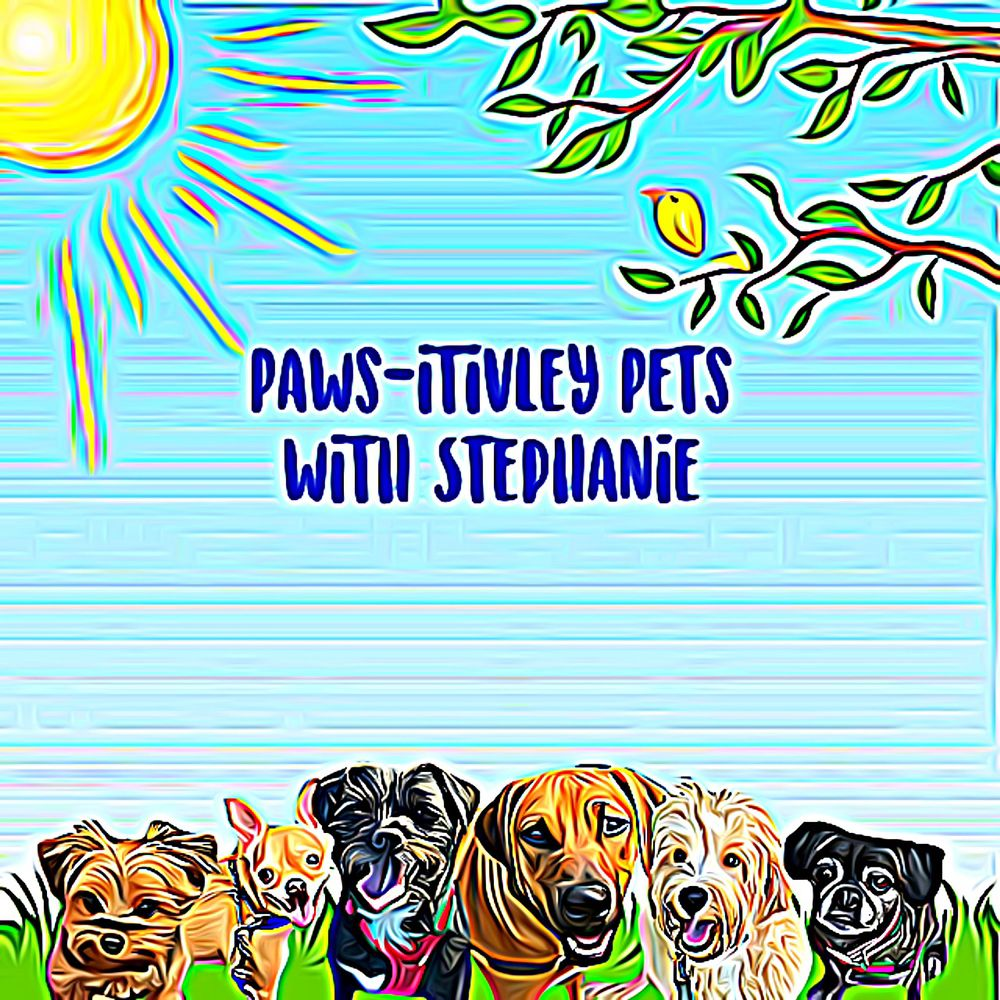 Paws-itivley Pets with Stephanie: Hillsboro, OR