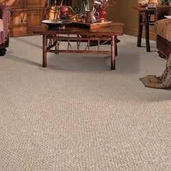 Eco Guys Carpet And Tile Cleaners Carpet Cleaning 8501