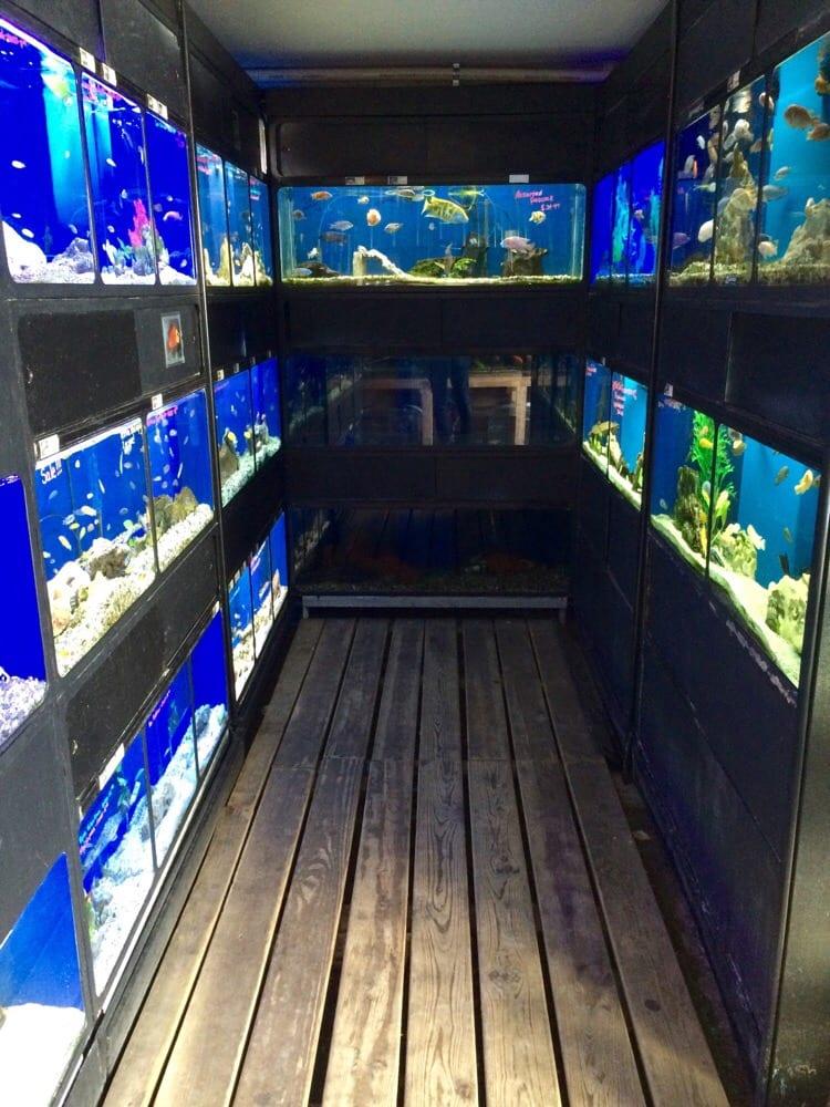 The Reef Aquarium Shop Indianapolis In