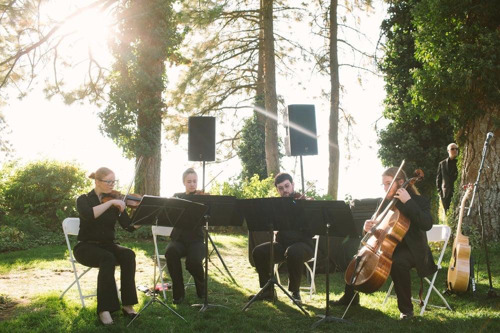 Vibrations Violin Studio