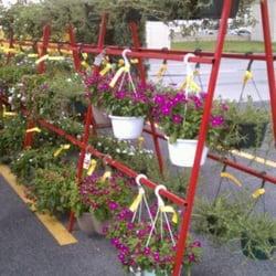 Houston Garden Centers Nurseries Gardening 10939 Katy Fwy