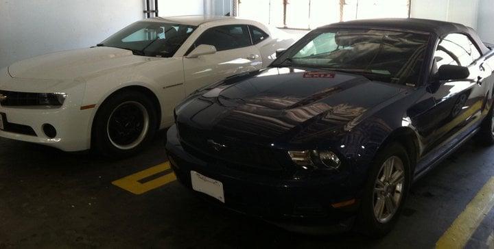 Rent A Camaro Or A Convertible Mustang.