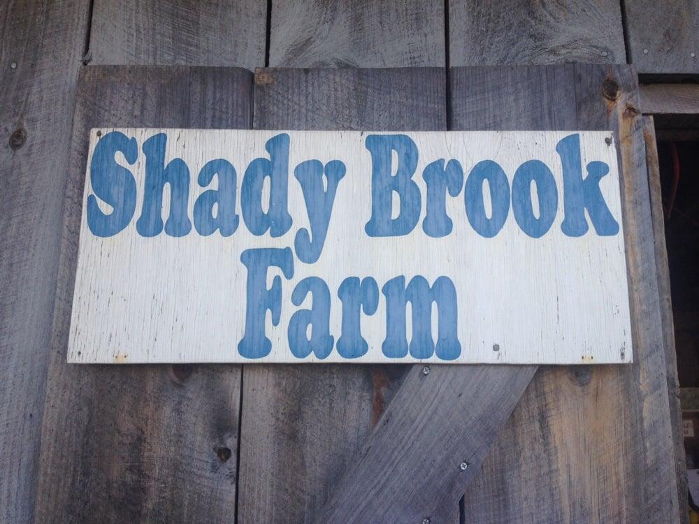 Shady brook farm markets 10 west loop rd biddeford for Shady brook farms