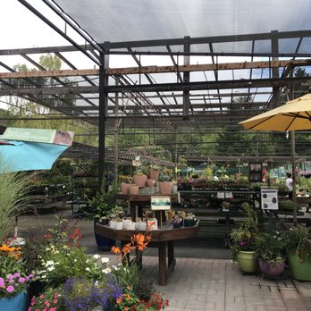Photo Of Orchard Nursery Lafayette Ca United States