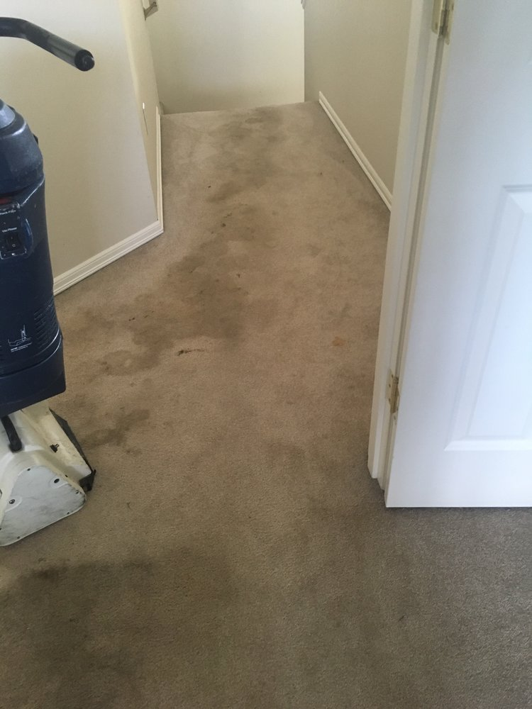 Green Planet Carpet Cleaning 40 Photos Carpet Cleaning
