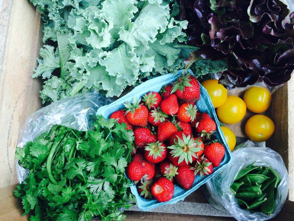 Fellowship Foods: 864 Jackson Ave, Monaca, PA