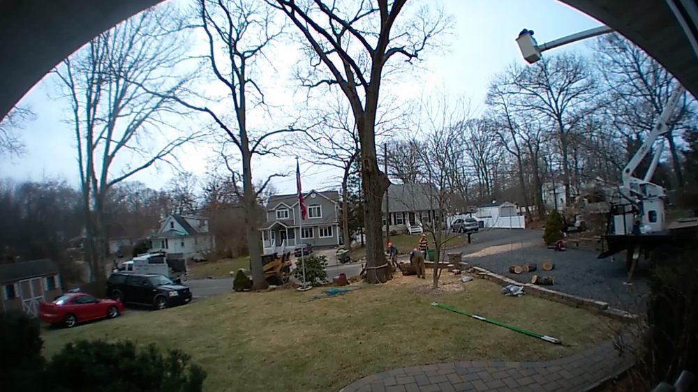 Sunburst Tree Experts: 111 Rocky Point Rd, Middle Island, NY
