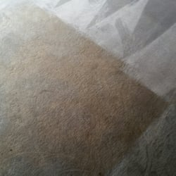 Photo Of Superior Carpet Rug Cleaning Knoxville Tn United States Think