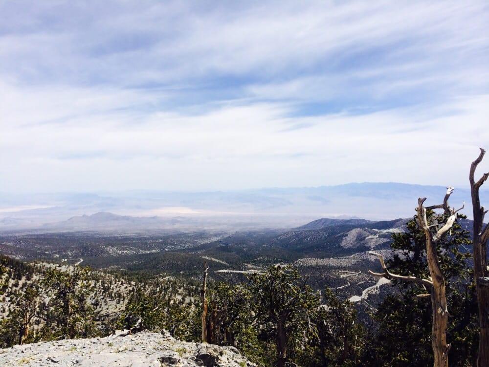 Fletcher Peak Trail: Spring Mountain Recreation Area, Las Vegas, NV