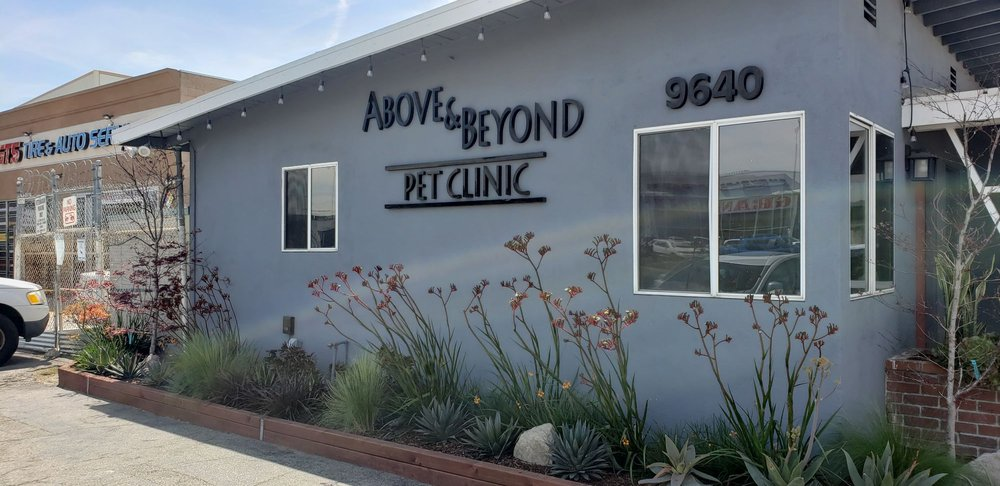 Above & Beyond Pet Clinic