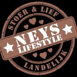 Hedendaags Top 10 Shopping in der Nähe von 3233 Oostvoorne, Niederlande - Yelp GE-85