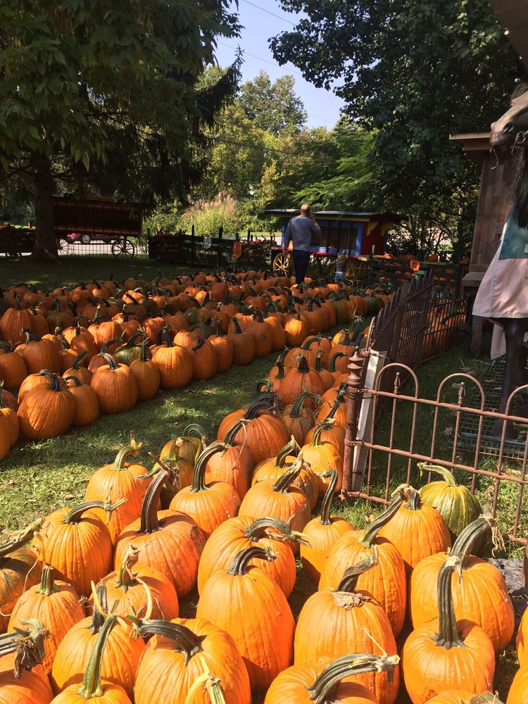 Kleathers Pumpkin Patch: 90 W Central Ave, Springboro, OH