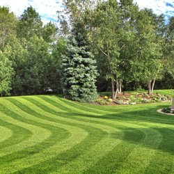 Dedicated Landscaping 11756 Adams St Denver
