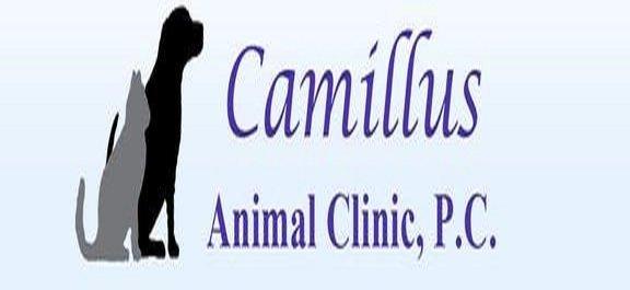 Camillus Animal Clinic: 31 Main St, Camillus, NY