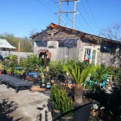 Photo Of Jo S Garden Depot Austin Tx United States
