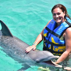 Dolphin Discovery Isla Mujeres - 186 Photos & 59 Reviews