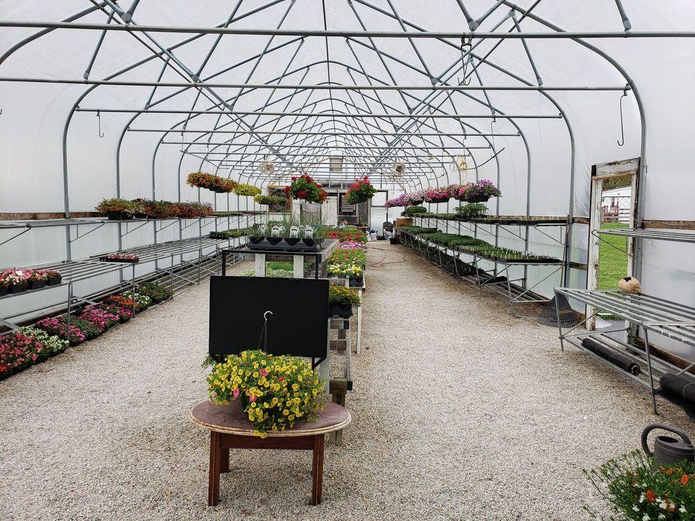 Marigold's Bybee Greenhouse: 20 Bybee Lp, Waco, KY