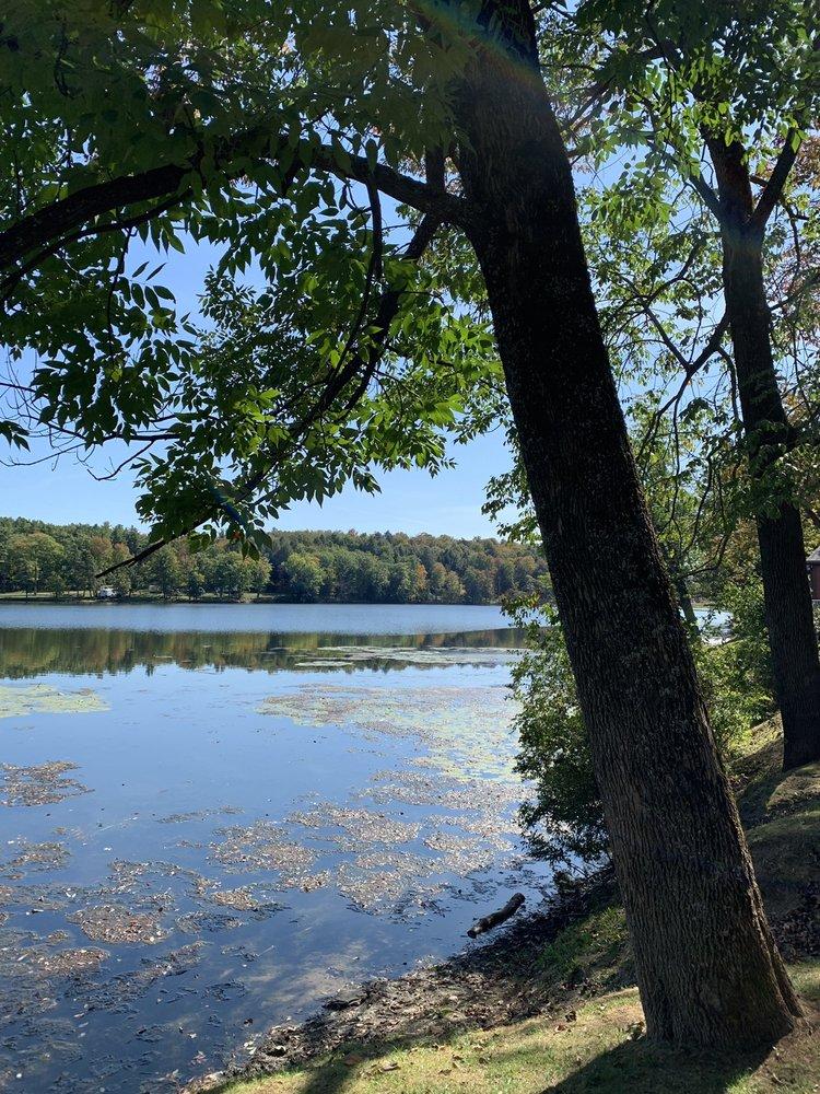 Yogi Bear's Jellystone Park: 111 East Turtle Lake Rd, Garrattsville, NY