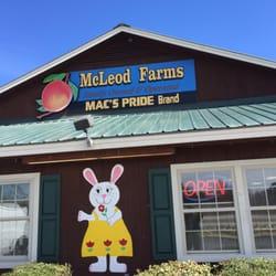 McLeod Farms FM - Farmers Market - 2513 W Lucas St, Florence