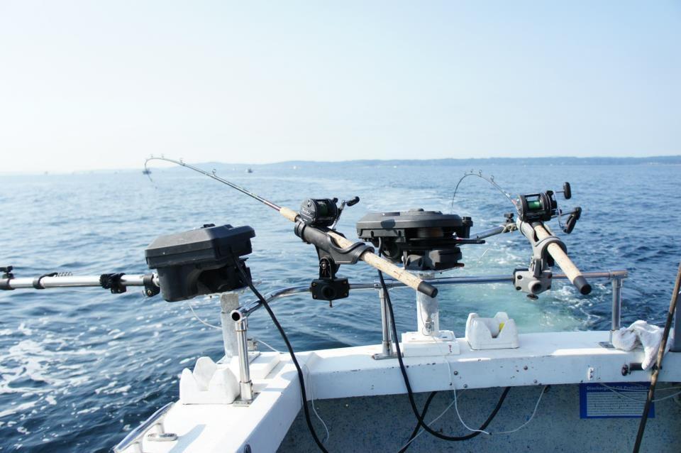 Set up for salmon fishing yelp for Salmon fishing setup