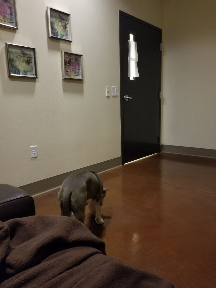North Rainbow Veterinary Emergency Hospital