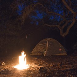 camping in the woods at night. Photo Of Ocala National Forest - Silver Springs, FL, United States. Camping In The Woods At Night