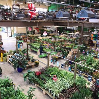 Photo Of Orchard Supply Hardware   Fort Lauderdale, FL, United States. The  Plants