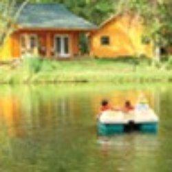 timber lake resort campgrounds 8216 black oak rd mount