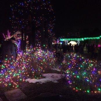 Photo of Denver Zoo Lights - Denver, CO, United States - Denver Zoo Lights - 238 Photos & 73 Reviews - Festivals - 2900 E