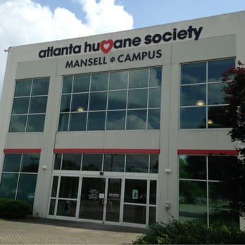 Best Place To Adopt A Dog In Atlanta