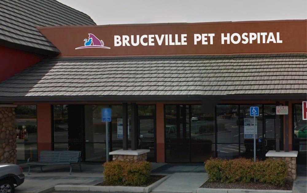 Bruceville Pet Hospital