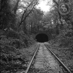tunnel hill single men Meet tunnel hill (georgia) women for online dating contact american girls without registration and payment you may email, chat, sms or call tunnel hill ladies instantly.