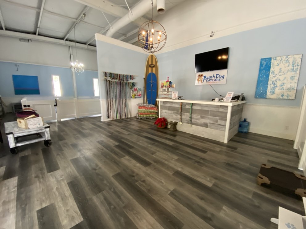 Beach Dog Daycare: 820 SE 5th Ave, Delray Beach, FL