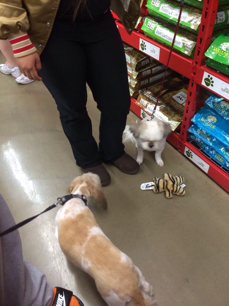 Pet Food Express Vet Clinic Hours
