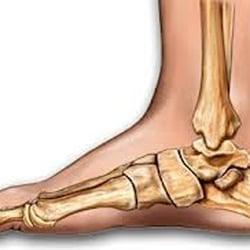 new zealand porm foot