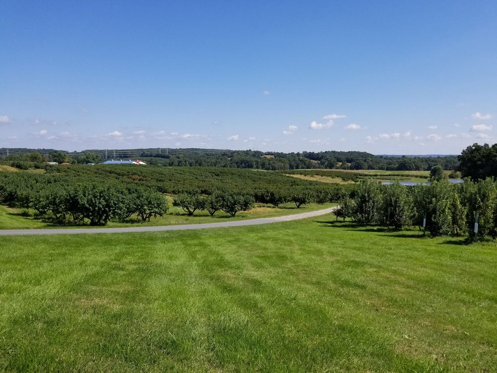 Lewis Orchards: 18900 Peach Tree Rd, Dickerson, MD