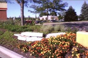 Mark's Quality Landscaping: 1744 N 21st Ave, Melrose Park, IL
