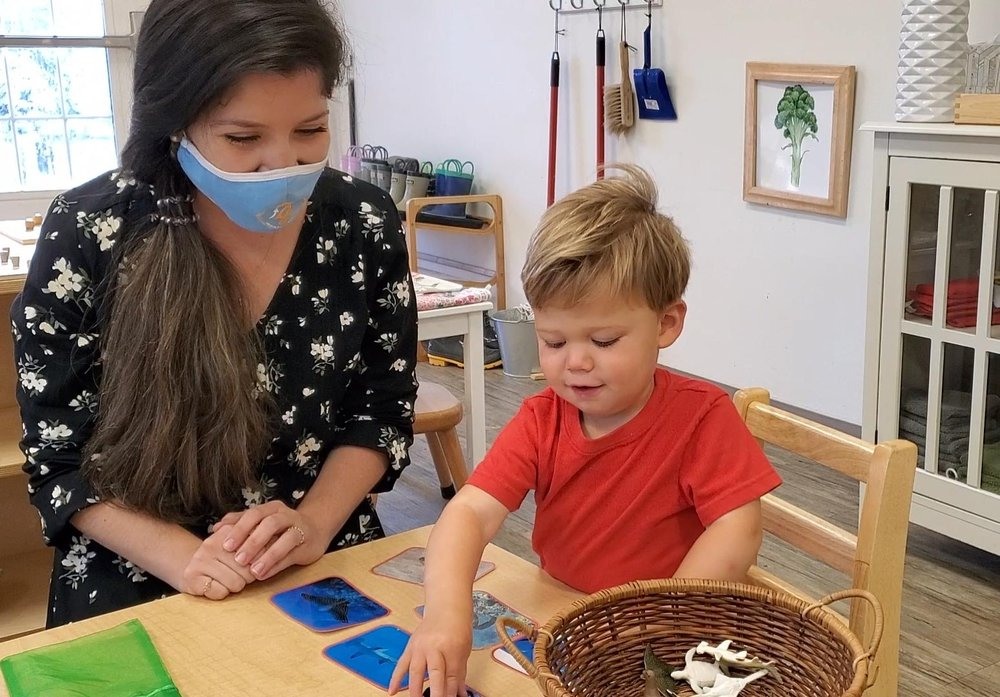Guidepost Montessori at Westlake: 4613-B Bee Cave Rd, West Lake Hills, TX