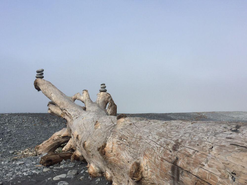 King Range National Conservation Area: 768 Shelter Cove Rd, Whitethorn, CA