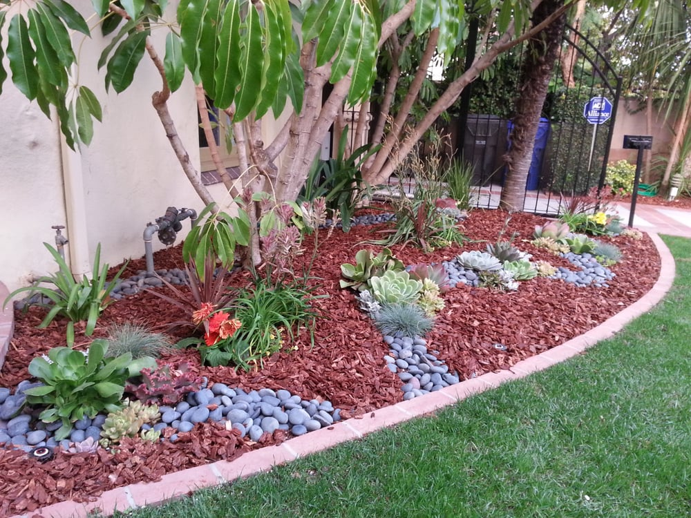 Low maintenance landscape with succulents plants yelp for Low maintenance green plants