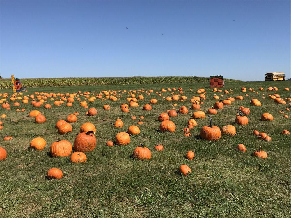 Rohrbach's Farm Market: 240 Southern Dr, Catawissa, PA