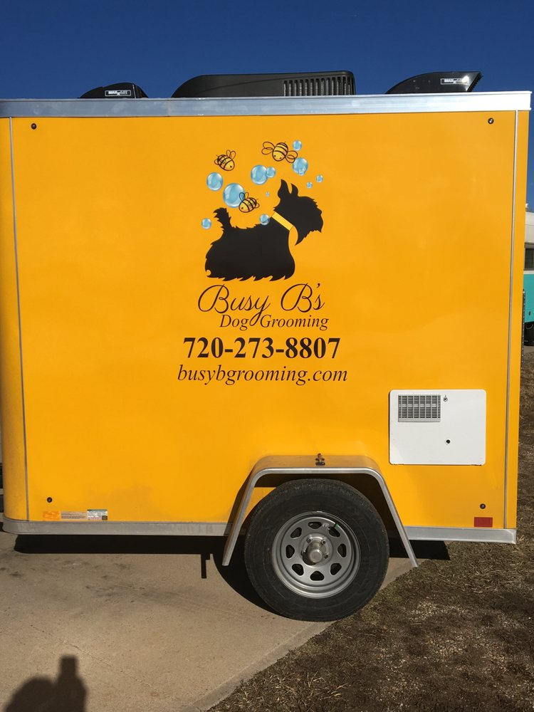 Busy B's Dog Grooming: Fort Collins, CO