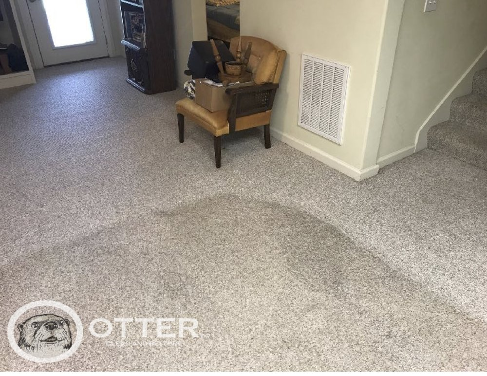 Photo of Otter Clean and Restore - Birmingham, AL, United States. Carpet cleaning