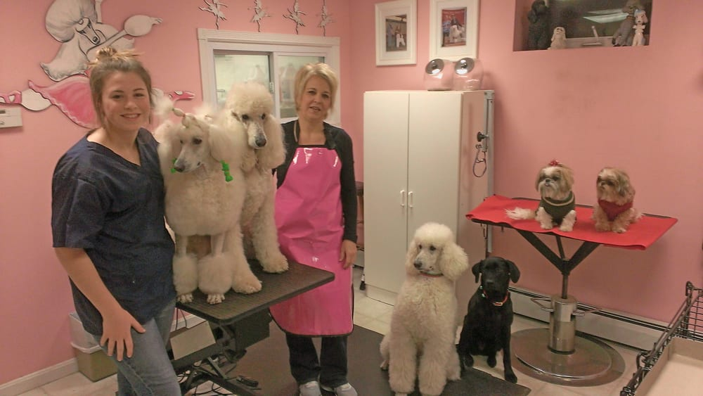 Fulton's Professional Dog Grooming