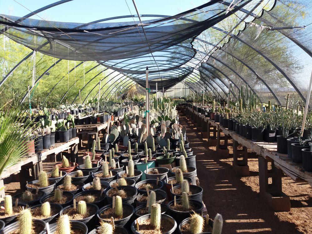 Distinctive Earthscapes at The Avocado Nursery: 6855 N Overfield Rd, Casa Grande, AZ