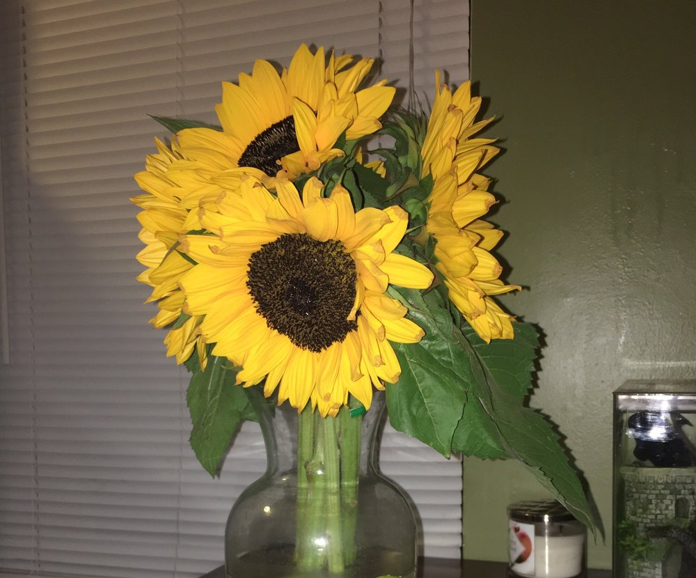 their unrealistic but real sunflowers yelp