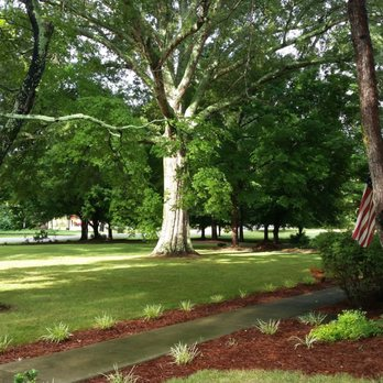 Photo Of Vintage Inn Yadkinville Nc United States This Awesome Tree In