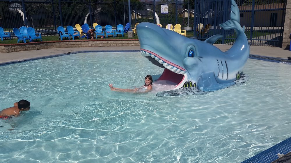 The Shark At The Kiddie Pool Yelp