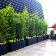 Nyc Garden Design nyc landscape design how to rooftop terrace garden all photo of amber freda home and Photo Of Amber Freda Home And Garden Design New York Ny United States