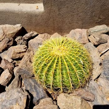 Photo Of Eden Garden Supply   Hayward, CA, United States